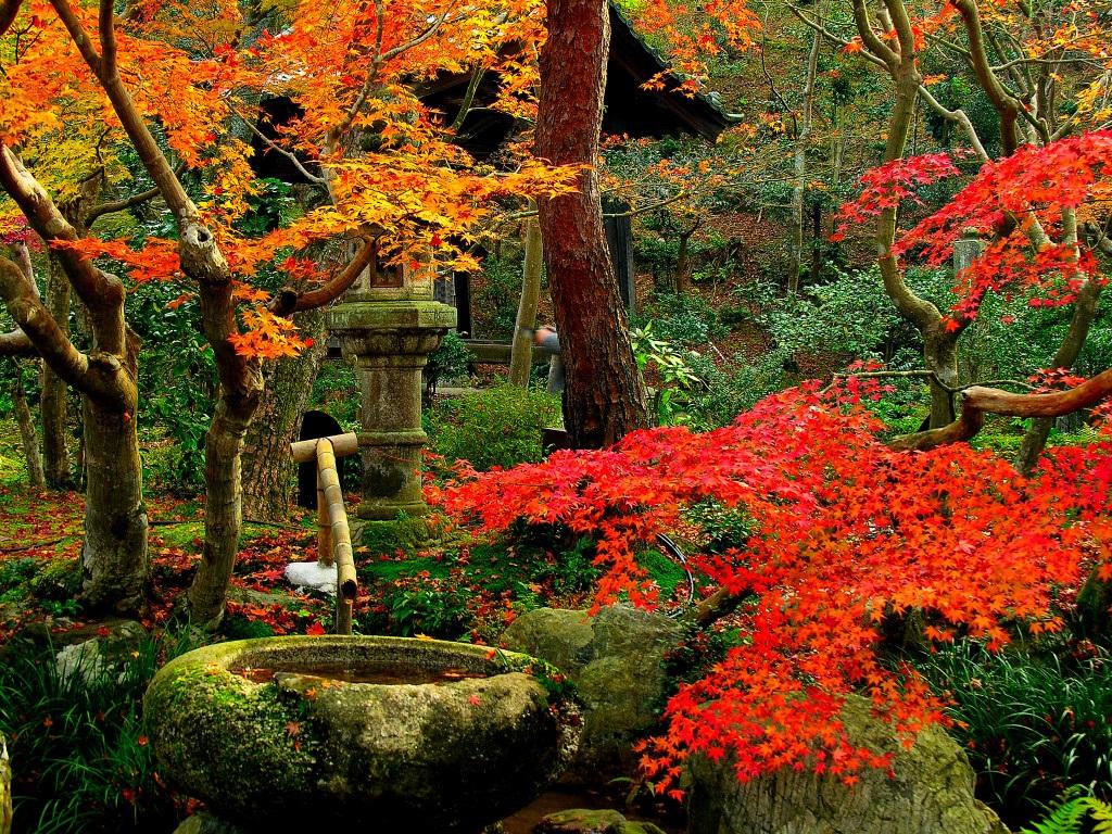 Jardin Zen de Kyoto