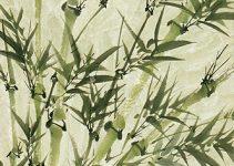 Comment peindre les feuilles de bambou