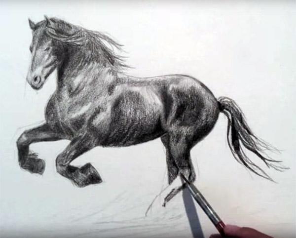 Comment dessiner un cheval couleurs zen - Dessiner un cheval simple ...